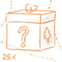 Überraschung - Weihnachtsschmuck-Set - 25 Stück
